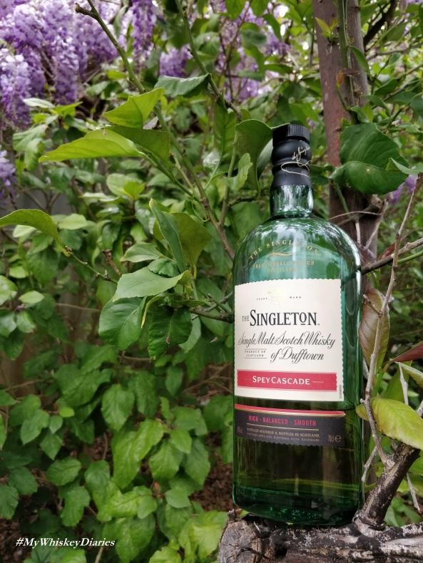 Review Singleton Spey Cascade